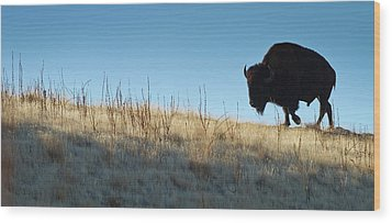 Sunset Ridge Wood Print by John Blumenkamp