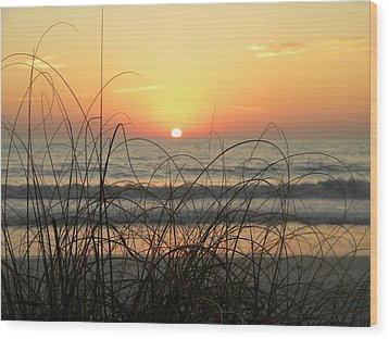 Sunset Sea Grass Wood Print by Sean Allen
