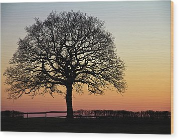Wood Print featuring the photograph Sunset Silhouette by Clare Bambers
