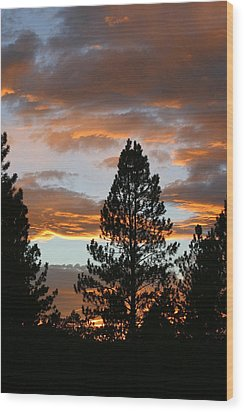 Sunset Silhouette Wood Print by Donald Tusa