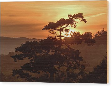 Sunset Silhouette Wood Print by Keith Boone