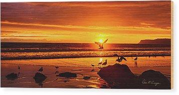 Sunset Surprise Pano Wood Print