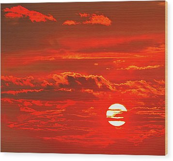Sunset Wood Print by Tony Beck