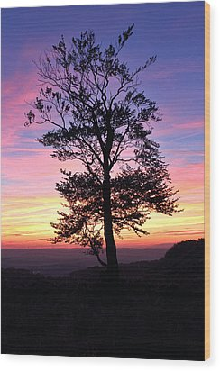 Sunset Tree Wood Print by RKAB Works