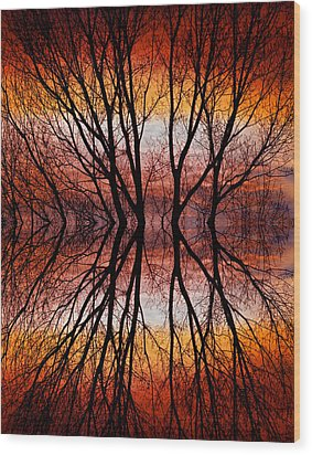 Sunset Tree Silhouette Abstract 2 Wood Print by James BO  Insogna