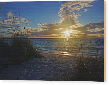 Sunset Windsurfer Wood Print by Robb Stan