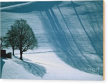 Wood Print featuring the photograph Sunshine And Shadows - Winterwonderland by Susanne Van Hulst