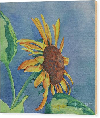Sunshine On My Shoulders Wood Print by Tracy L Teeter
