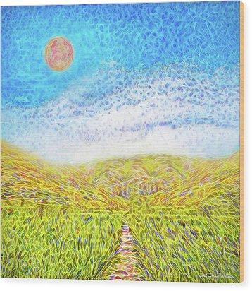 Wood Print featuring the digital art Sunshine Path - Field In Marin California by Joel Bruce Wallach