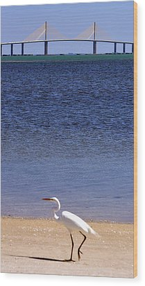 Sunshine Skyway Bridge With White Egret Wood Print by Rose  Hill