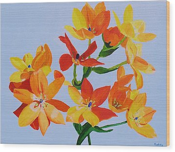 Wood Print featuring the painting Sunstar by Rodney Campbell