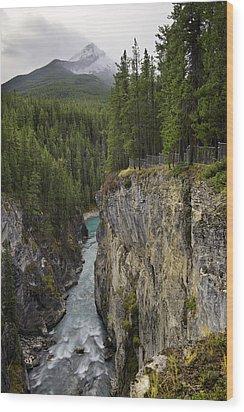 Sunwapta Falls Canyon Wood Print
