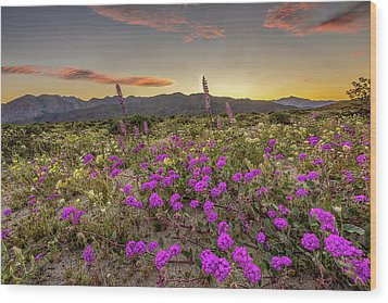 Wood Print featuring the photograph Super Bloom Sunset by Peter Tellone