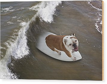 Surfer Dog Wood Print by John A Rodriguez