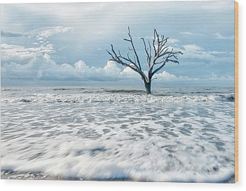 Surfside Tree Wood Print