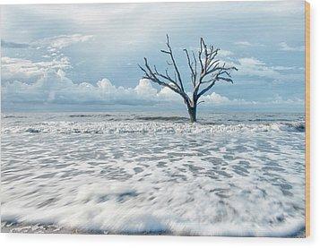 Surfside Tree Wood Print by Phyllis Peterson