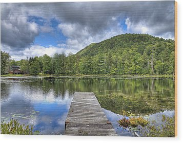 Wood Print featuring the photograph Surprise Pond At Palmer Point by David Patterson