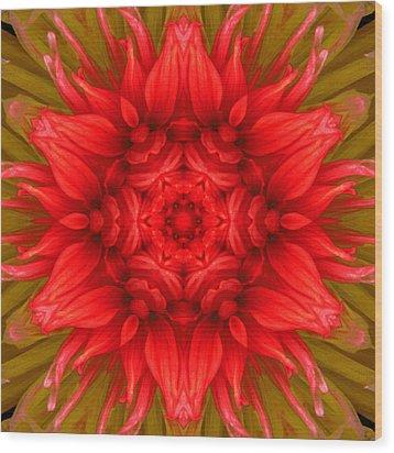 Surreal Flower No.6 Wood Print