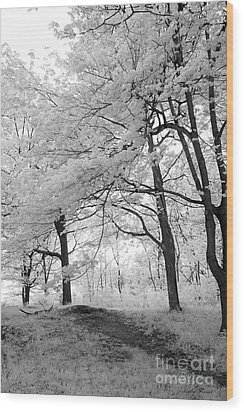 Wood Print featuring the photograph Surreal Infrared Black White Nature Trees - Haunting Black White Trees Nature Infrared by Kathy Fornal