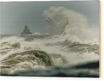Wood Print featuring the photograph Surrender by Everet Regal