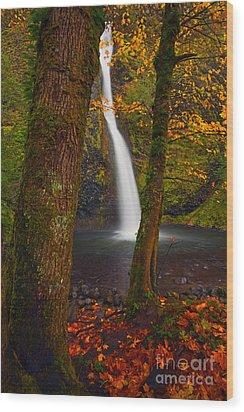 Surrounded By The Season Wood Print by Mike  Dawson