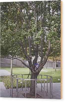 Survivor Tree Wood Print