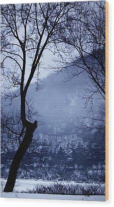 Susquehanna Dreamin... Wood Print by Arthur Miller