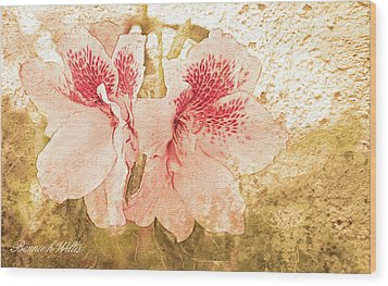 Wood Print featuring the photograph Sutle Harmony by Bonnie Willis