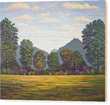 Sutter Buttes In Springtime Wood Print by Frank Wilson