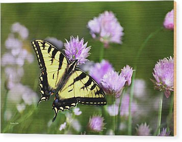 Swallowtail Butterfly Dream Wood Print by Christina Rollo