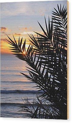 Swamis Palm Wood Print by Kelly Wade