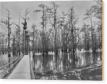 Swamp Dock Black And White Wood Print
