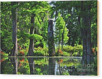 Swamp In Bloom Signed Wood Print