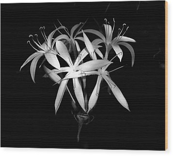 Wood Print featuring the photograph Swamp Lilies by Peg Urban