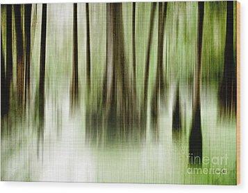 Swamp Wood Print by Scott Pellegrin