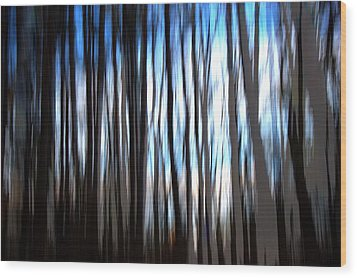 Swampland  Wood Print by Terence Morrissey