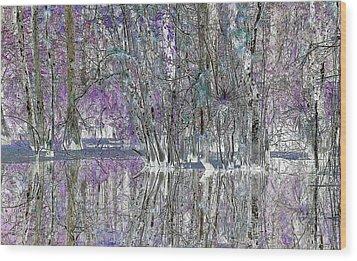 Swampscape Wood Print