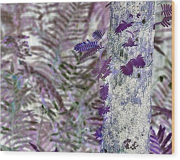 Ferns Of A Different Color Wood Print