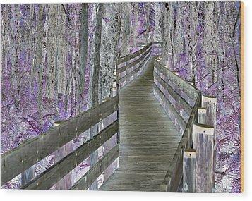 A Clear Path Forward Wood Print