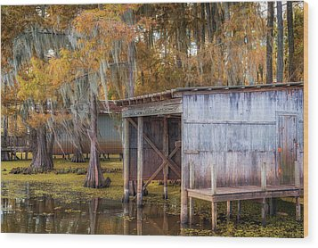 Swampy Dock  Wood Print