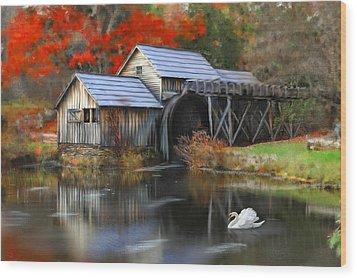 Swan At Mabry Mill Wood Print