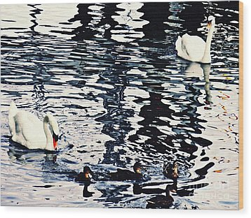 Wood Print featuring the photograph Swan Family On The Rhine by Sarah Loft