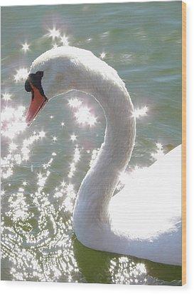 Swan II Wood Print by Mark Holbrook