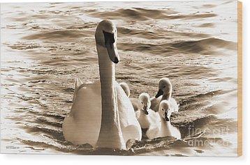 Swan Lake Wood Print by Jason Christopher