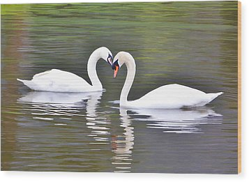 Swan Love Wood Print by Diane Alexander