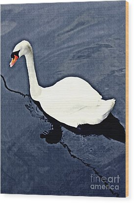 Wood Print featuring the photograph Swan On The Rhine by Sarah Loft