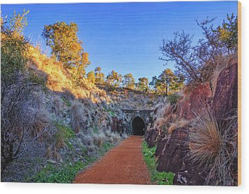 Wood Print featuring the photograph Swan View Railway Tunnel by Dave Catley