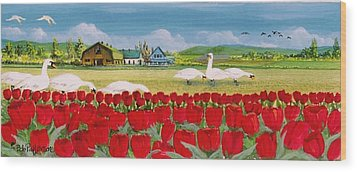 Swans And Tulips Wood Print by Bob Patterson