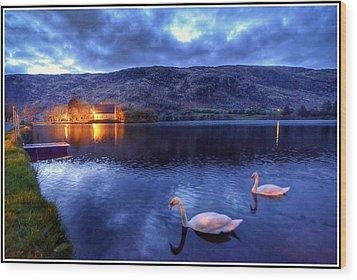 Swans At Gougane Barra Wood Print