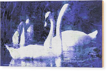 Wood Print featuring the digital art Swans On Water  by Fine Art By Andrew David